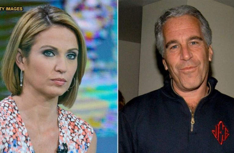 ABC News Anchor 100% Sure Epstein Was Killed